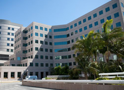 UCLA Orthopaedic Surgery Clinic in Westwood